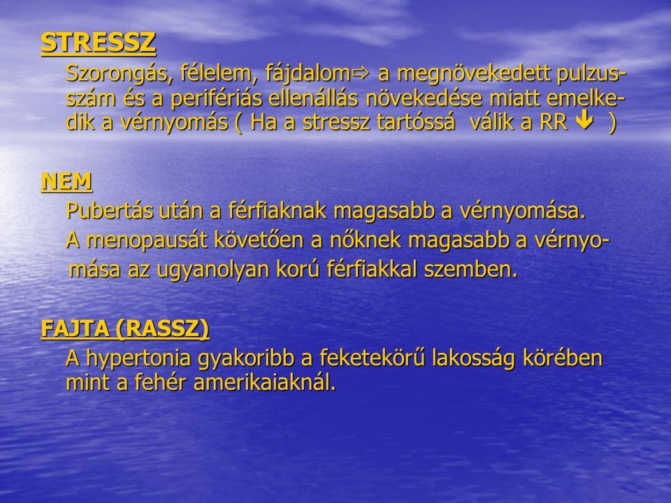Magas vérnyomás - Hypertension - szatmarbereg.hu