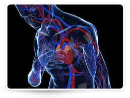hányinger és magas vérnyomás