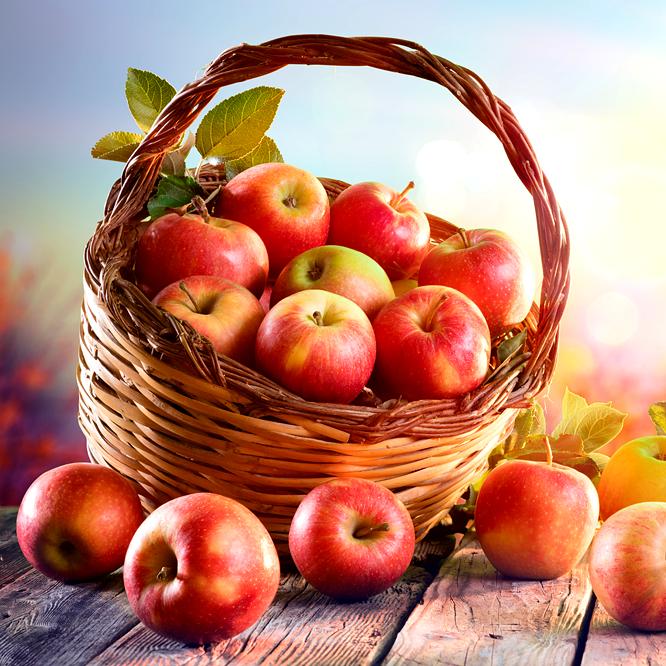 Ádám alma magas vérnyomás ellen