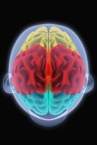 Kiderült, hogy a magas vérnyomás és az agykárosodás összefügghet