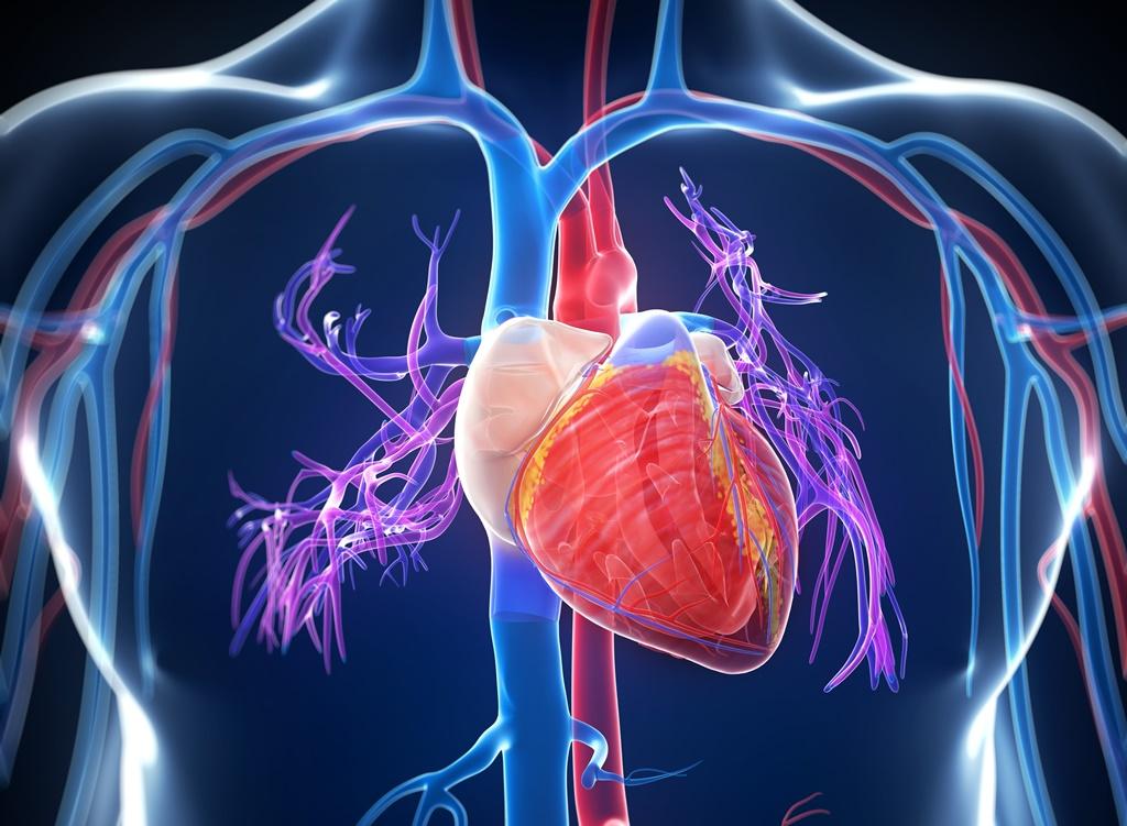 tágult erek hipertónia endokrin hipertónia kezelése