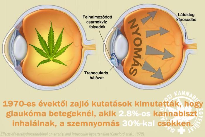 magas vérnyomású kannabisz)