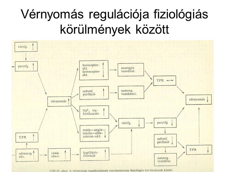 magas vérnyomás kezelésének előadása)