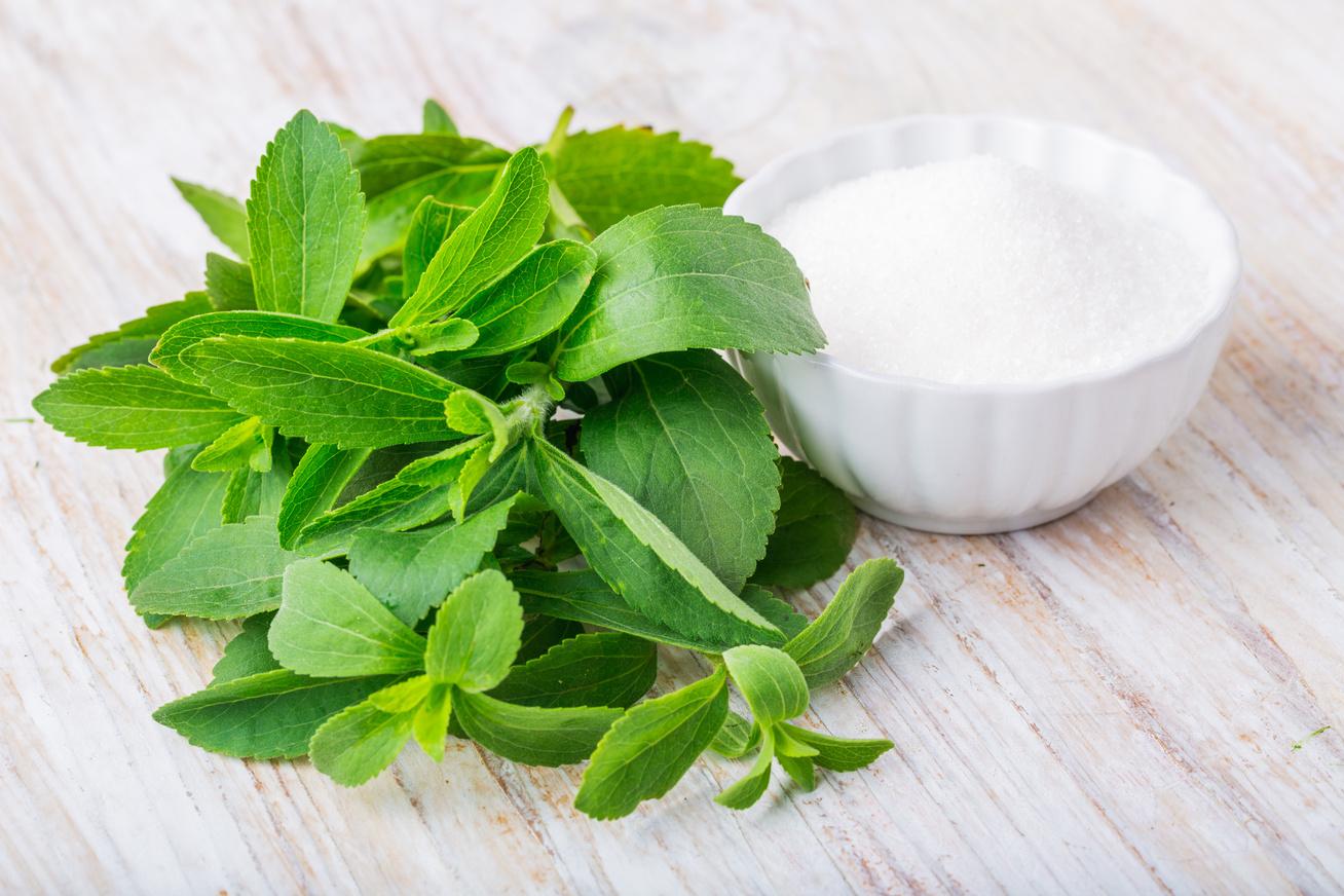 Stevia előnyei - cukorbetegség - vérnyomás