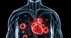 magas vérnyomás 1 2 fokos kezelés)