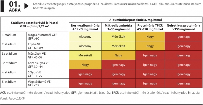 magas vérnyomás krónikus veseelégtelenséggel