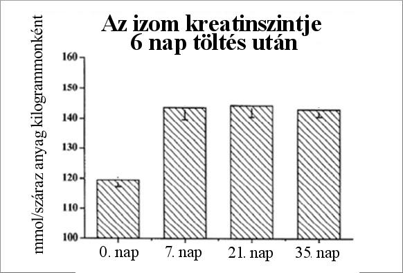 magas vérnyomás kreatinin in)