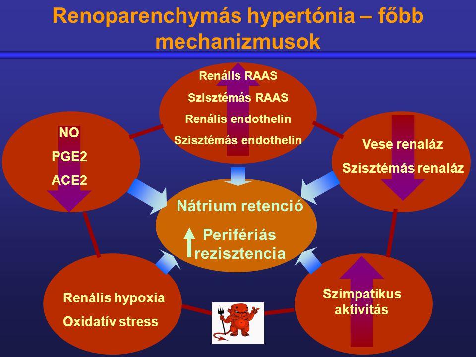 nátrium hipertónia torna a nyak számára a magas vérnyomásból