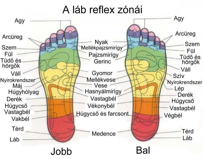 a magas vérnyomás reflexológiája)