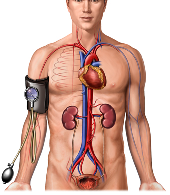 izom hipertónia kezelése