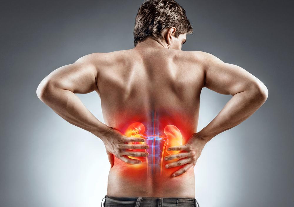 PharmaOnline - A visszatartott vizelet és a vérnyomás