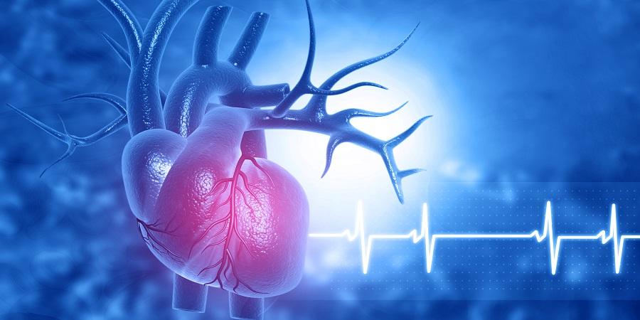 Nem megfelelő a szív vérellátása? A vérnyomást és az életmódot is rendezni kell