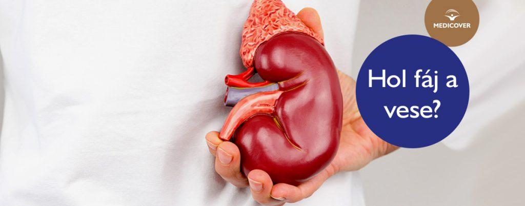 magas vérnyomás vese szindrómával