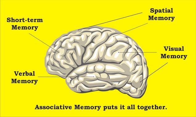 agy magas vérnyomásban