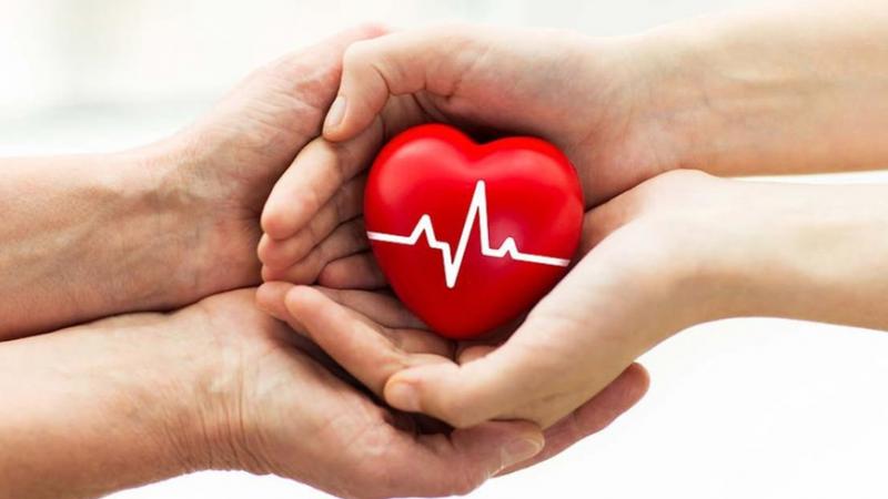 Amit a biztonságos véradásról tudni érdemes | SONLINE