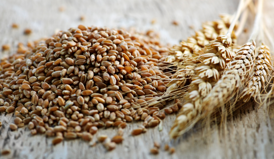 milyen gabonafélék fogyaszthatók magas vérnyomás esetén)