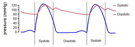 hogyan lehet megkülönböztetni a hipertóniás típust a magas vérnyomástól hogyan kell kezelni a magas vérnyomás népi gyógymódokat