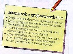 magas vérnyomás füzet)