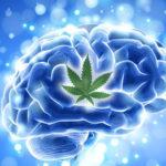 A marihuána így hat a szívre - HáziPatika