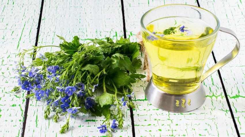 A legjobb növények magas vérnyomásra