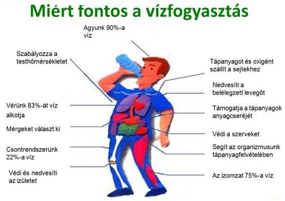 magas vérnyomás 2-3 éves gyermekeknél magas vérnyomás kritériumok