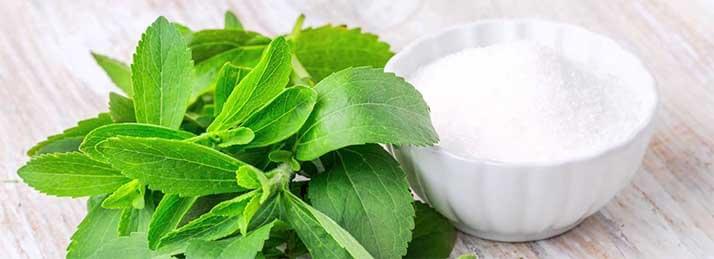 hogyan kell használni a stevia-t magas vérnyomás esetén magas vérnyomás megelőzése és kezelése 2020