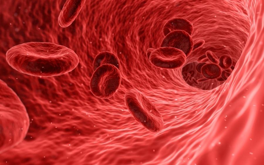 magas vérnyomás vörösvértestek