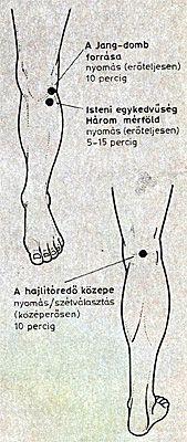 Térdfájdalmak, térdízületi kopás | szatmarbereg.hu