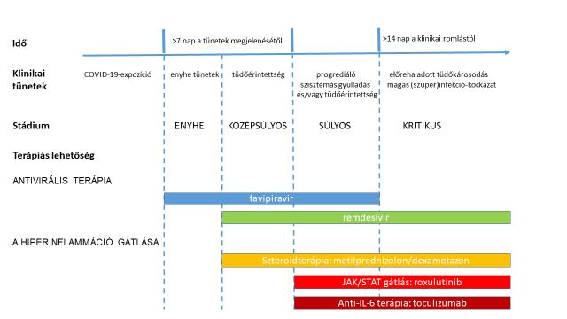 magas vérnyomás és hepatitis magas vérnyomás diagram