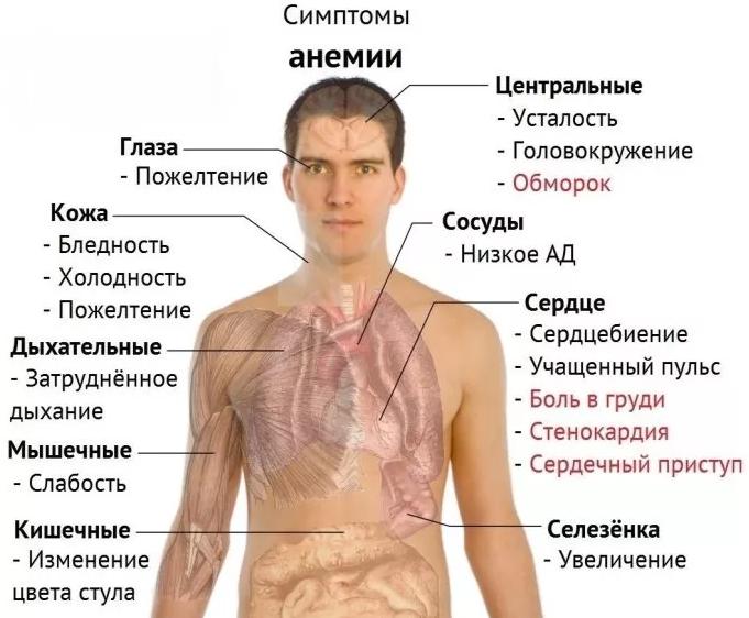 1 fokos magas vérnyomás milyen nyomáson)