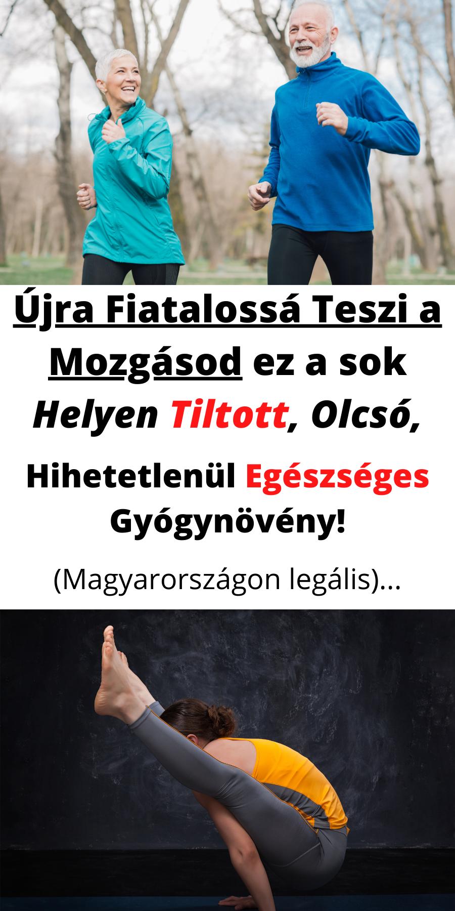 leo bokeria a magas vérnyomás kezeléséről)