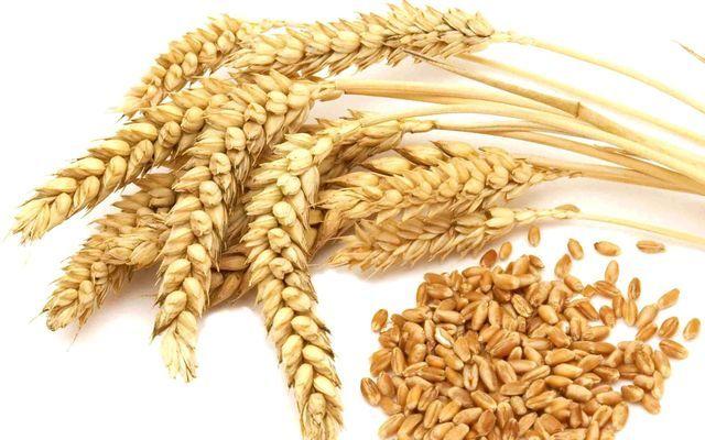 A teljes kiőrlésű gabonák és a vérnyomás