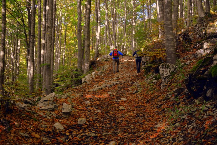 Nordic walking botokkal a magas vérnyomás ellen