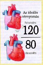 magas vérnyomás füzet ascorutin és magas vérnyomás