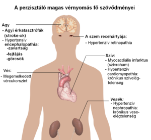 magas vérnyomás élettartama)
