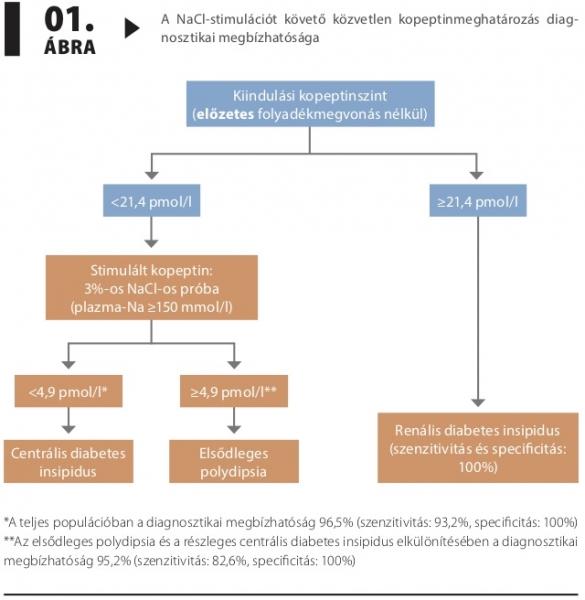 Mi a cukorbetegség (diabetes mellitus)?