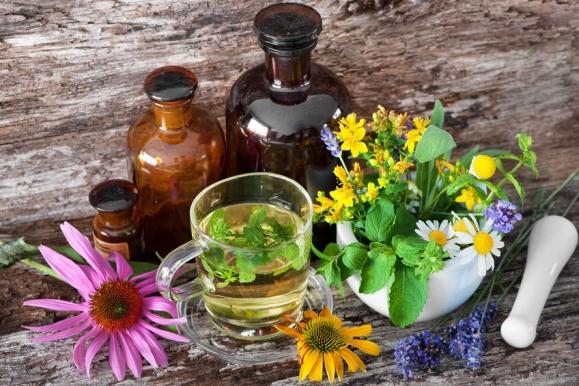 magas vérnyomású gyógynövények